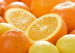 La vitamine C, votre meilleure alliée pour l'hiver !