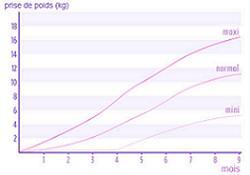 M�thode : Votre poids est-il bien dans la courbe ?
