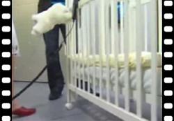 Vidéo : la chambre idéale de bébé