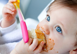 Blog : L'équilibre alimentaire des tout petits