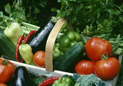 Quizz : Quels sont les vrais produits bio ?