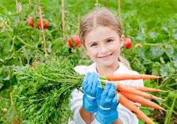 Etes-vous un pro du jardinage bio ?