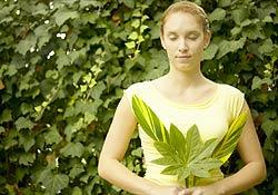 Test de couleur gratuit : connaissez-vous la signification de la vouleur verte ?
